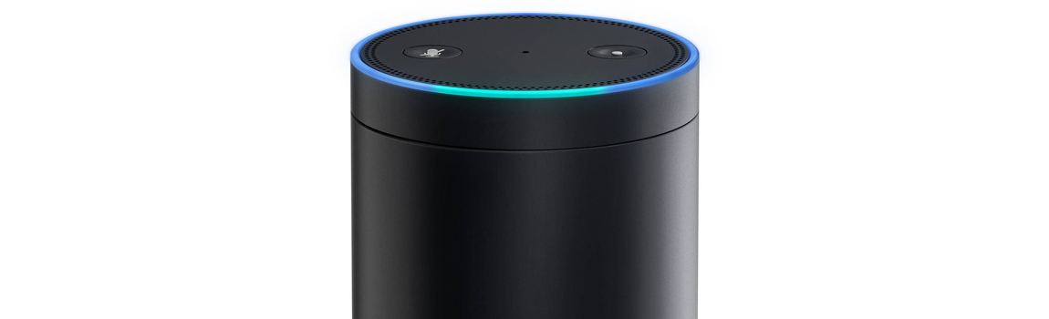 Gay Christmas Gift Ideas - Amazon Echo