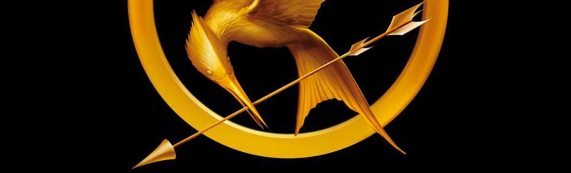Gay Christmas Gift Ideas, Hunger Games Mockingjay Pin
