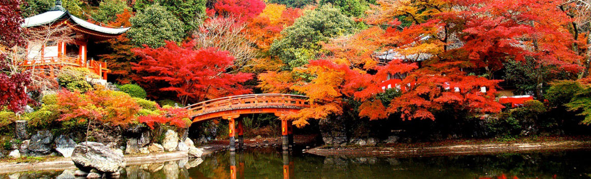 Gay Honeymoon Destinations, Kyoto