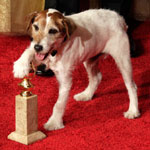 Uggie the dog suffering health issues
